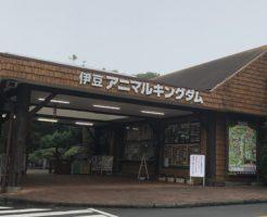 伊豆アニマルキングダムの入口